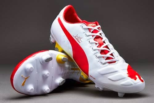 Puma evoPOWER 1 FG Special Edition football boots