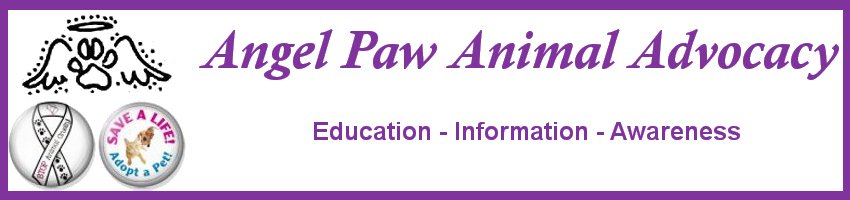 Angel Paw Animal Advocacy