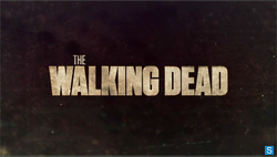 """The Walking Dead - A - Review : """"All Roads Were Leading to This - Finale Review and Season Retrospective"""""""