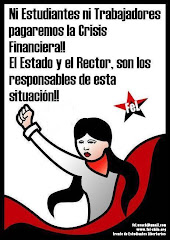Crisis Financiera USACH