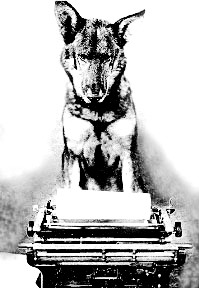 """Paws on my typewriter"""