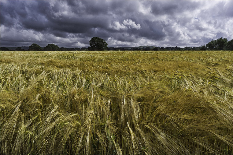 emphoka, photo of the day, Neil Leighton, Leica D-LUX 5