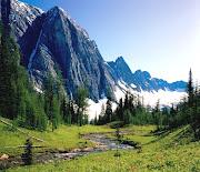 Winding StreamBanff National Park (banff national park alberta canada)