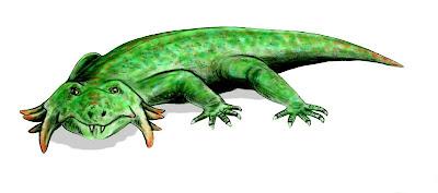 Hypsoganthus