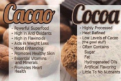 Mana yang paling Sehat, Cacao atau Cocoa?