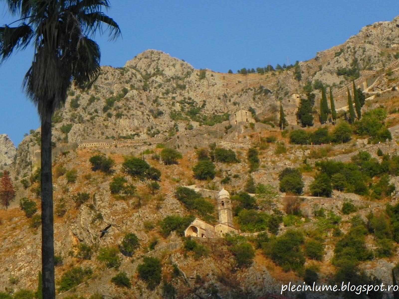 Urcarea spre cetate in Kotor