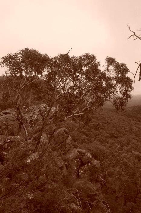 View from ridge on Chatauqua Peak track