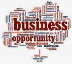 Peluang Bisnis Sampingan Yang Menjanjikan Tahun 2014