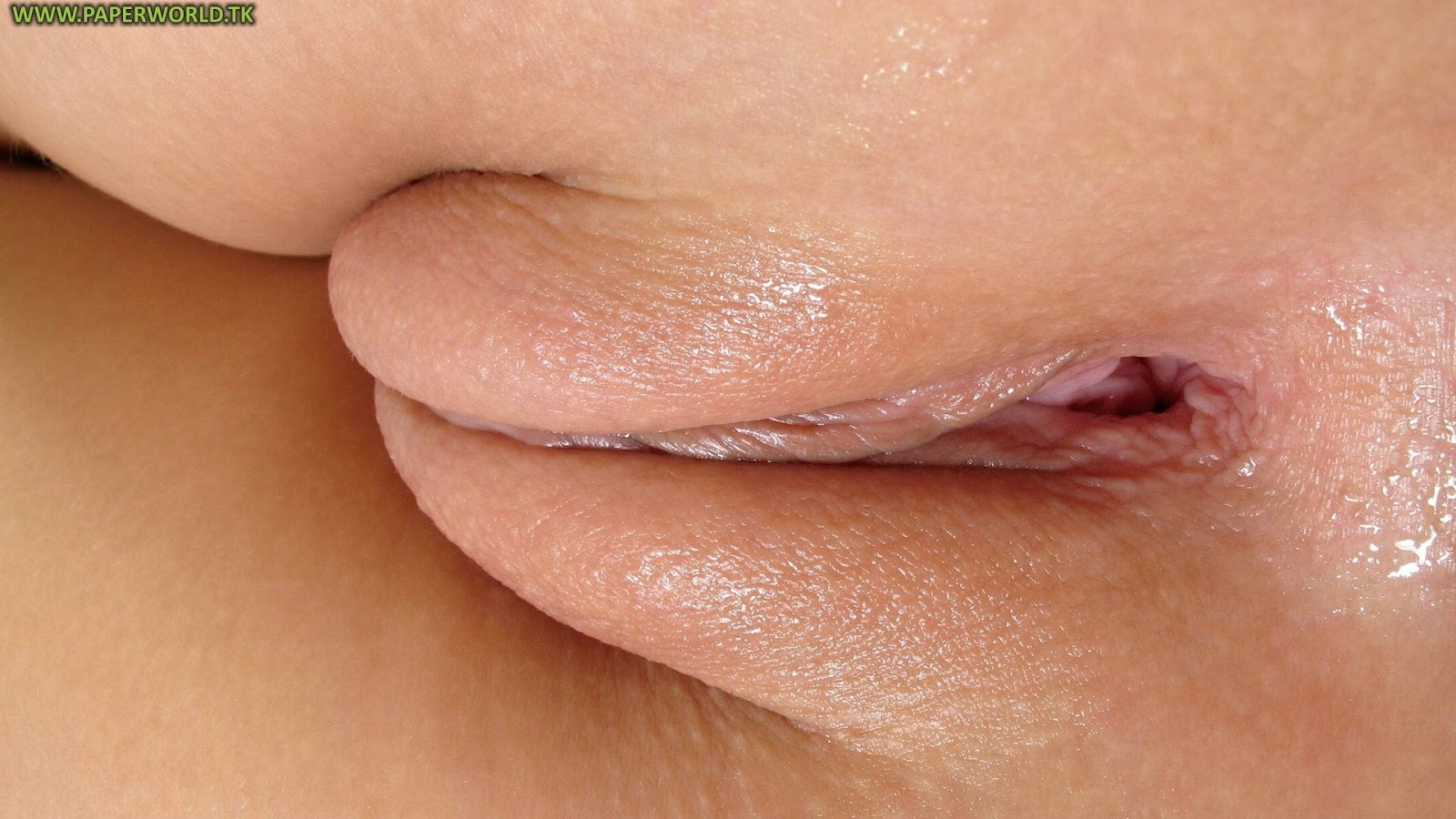Wonderful perfect shave pussy closeup was