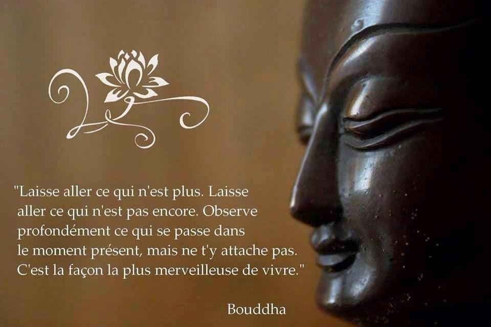 Fabuleux La Page de la Sagesse : Citation de sagesse de Bouddha HE32
