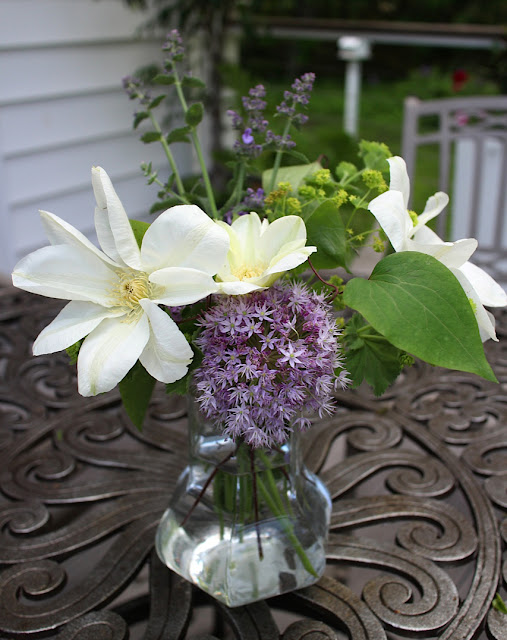 The Impatient Gardener -- Garden Appreciation Society Week 6 Guernsey Cream clematis, allium, lady's mantle, nepeta