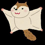 モモンガのイラスト