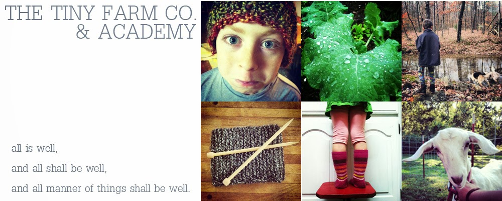 The Tiny Farm Co. & Academy