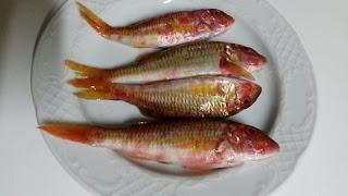 Moll-Salmonete-pescado-Bonpreu-Esclat-Collbato