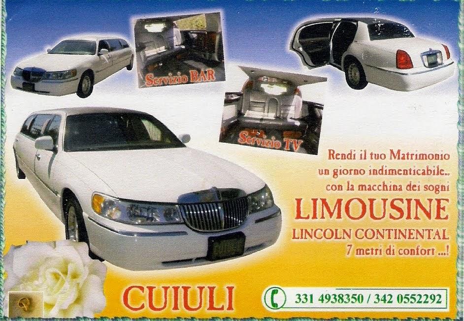 Noleggio Limousine