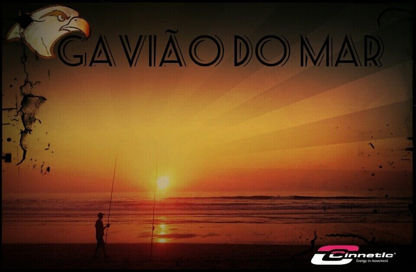gavião do mar