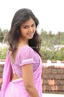 Monal, gajjar, showing, fleshy, navel, in, saree, in, vanavarayan, vallavarayan, movie