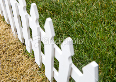 Is the grass ever greener on the other side of the fence