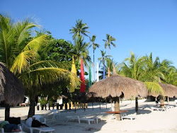 Cebu Beach Club and Tambuli Beach Club - WEST