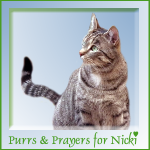 Purrs and Prayers for Nicki