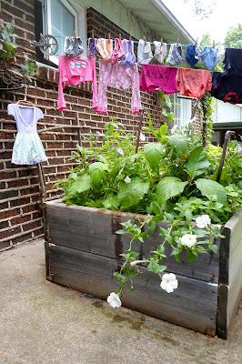 table de jardinage en hauteur