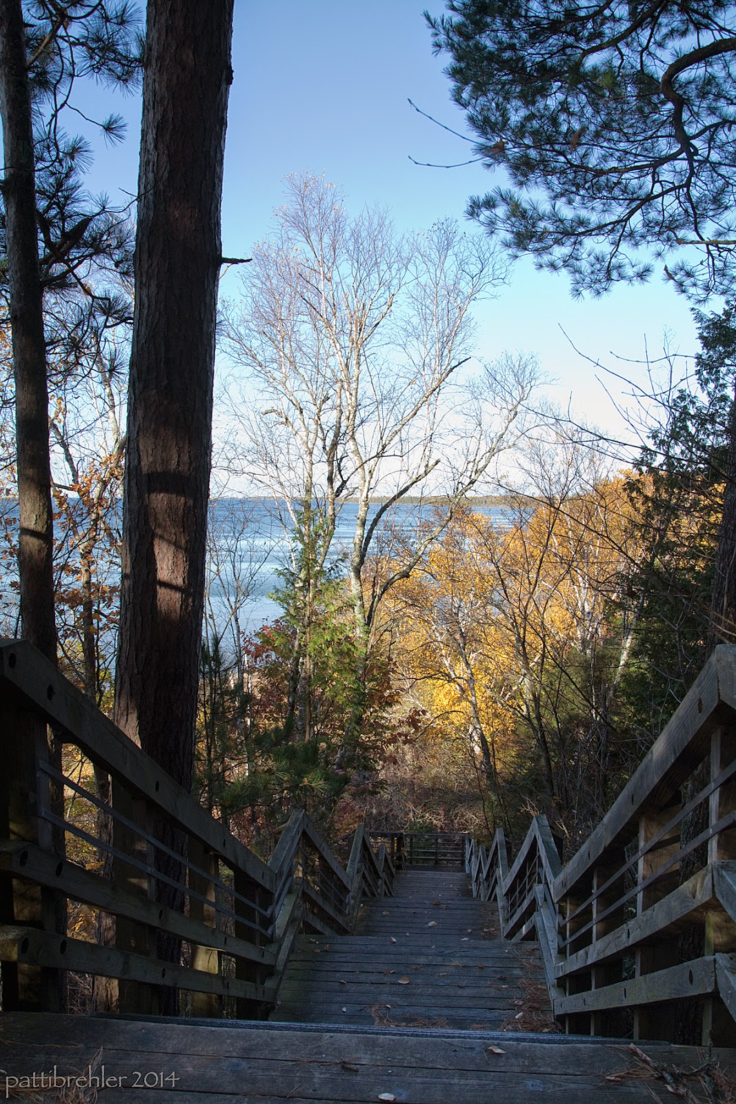 A shot from the top of a long staircase going down through the woods to the edge of Lake Michigan. The stairs have wooden railings and landings, but the steps are open metal grates. There are two tree trunks on the left side, trees on both sides, in the distance beyond the stairs the trees are bright yellow, and one has lost it's leaves. The blue water is just visible beyond the trees.