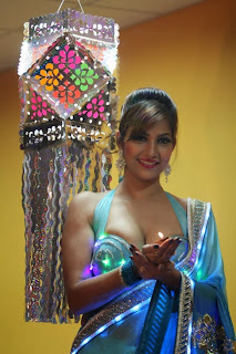 Actress Model Tanisha Singh Pictureshoot Stills for Diwali 2013 Special 0004