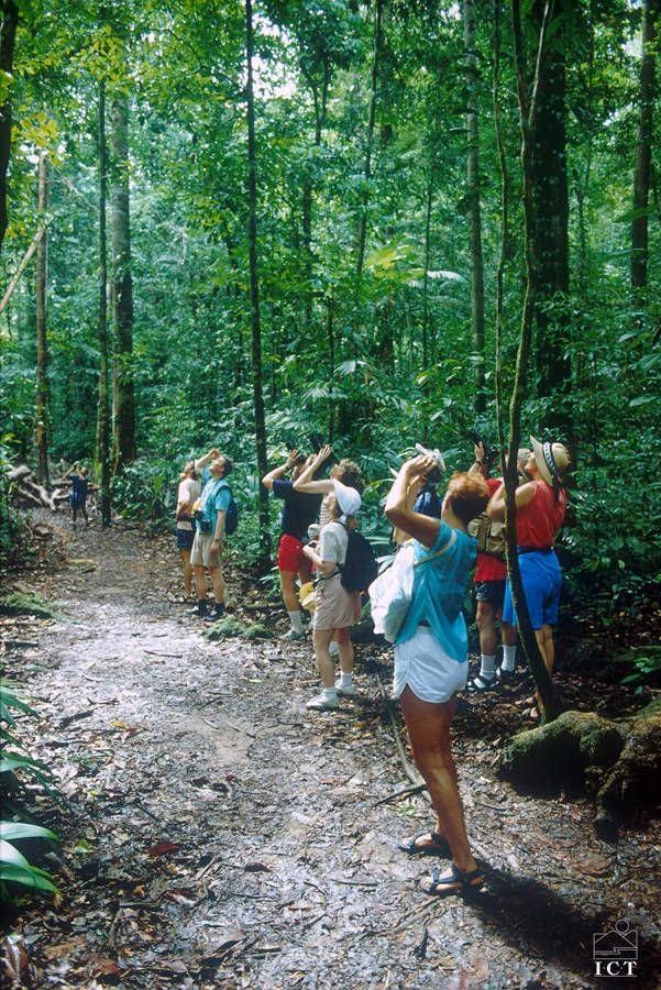 Ecoturismo ajuda a reduzir pobreza em locais próximos a áreas protegidas