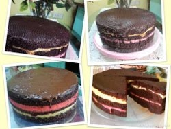 DUO LAYERED CHEESE CHOC CAKE