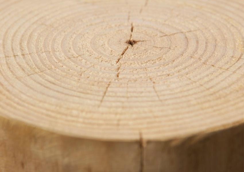 Excepcional Muebles De Troncos Endbed Friso - Muebles Para Ideas de ...