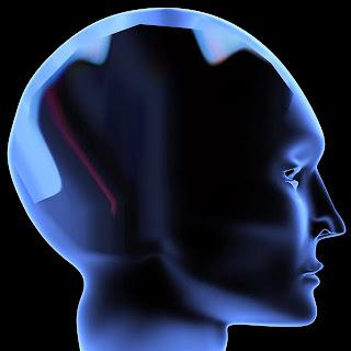 enbepe-natural-brain-power-nutrition