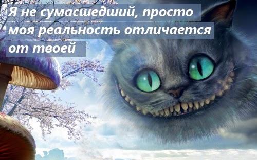 Мудрость от Чеширского кота