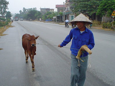 Non La (Vietnamese hat or conical hat). Vietnam farmer