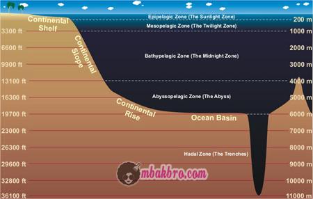 lapisan di laut dalam