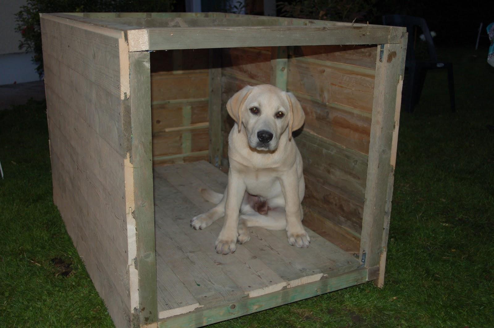 isoler une niche chien. Black Bedroom Furniture Sets. Home Design Ideas