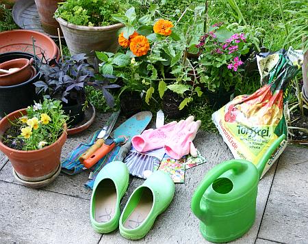 Gartentipps s en und pflanzen auf kleinem raum for Raum pflanzen