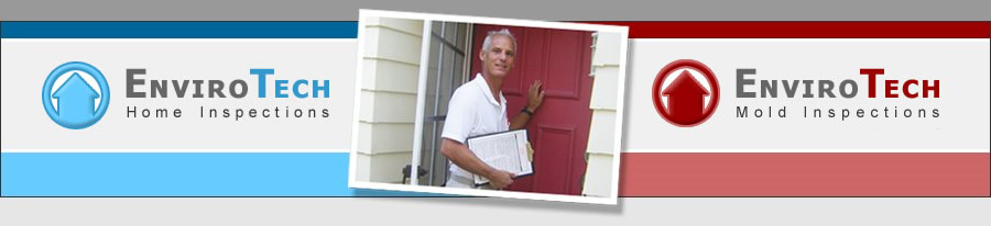 Home Inspections and Mold Survey Specialist