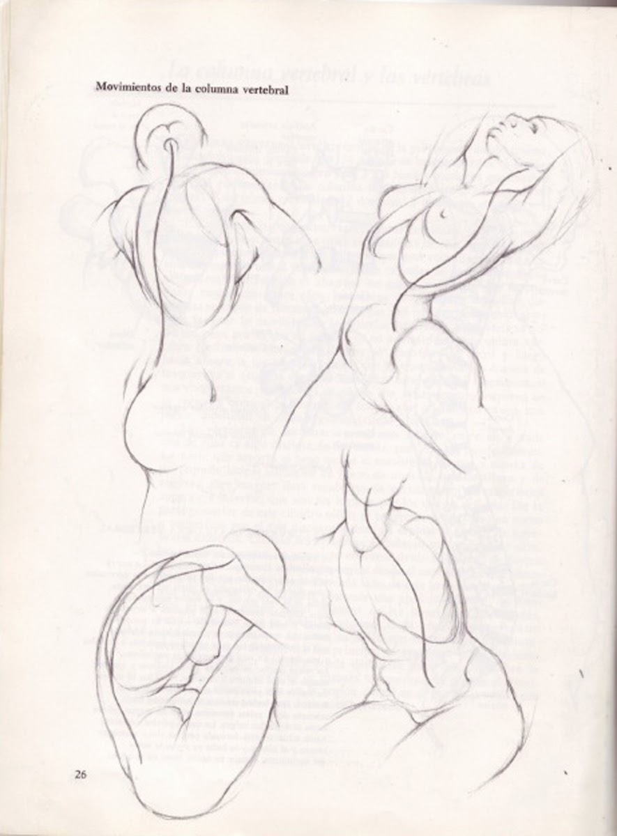 Human Figure Drawing Methods: Female Anatomy Figure Drawing Quick Pose