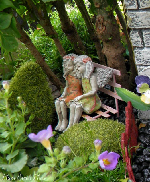 Fairy Garden 2015, China Doll Tree