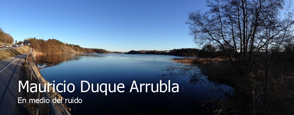Mauricio Duque Arrubla