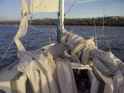Ripped Sails