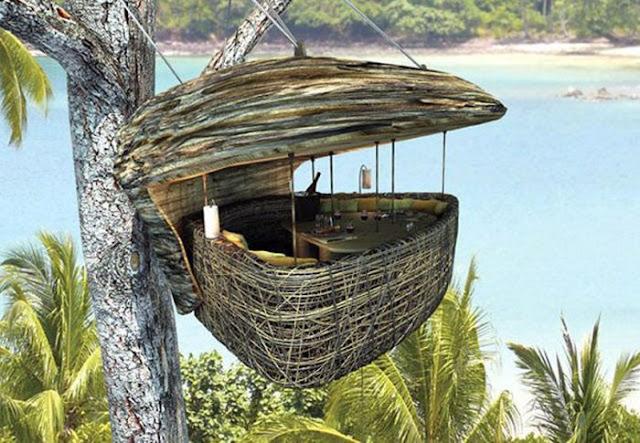 amazing restaurant, treetop restaurant, restaurant in thailand, thailand tree top restaurant, amazing design