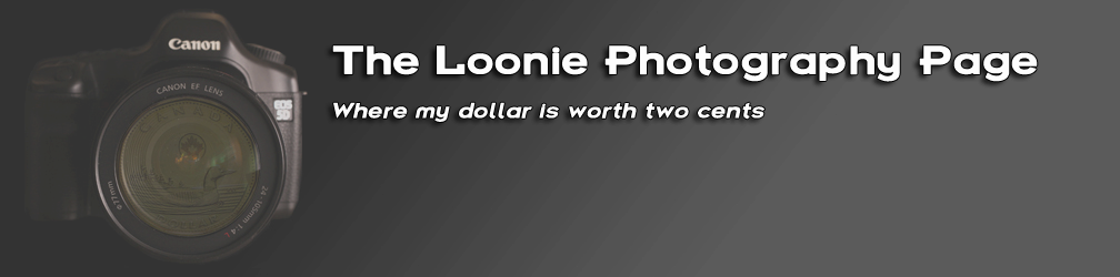 The Loonie Photography Page