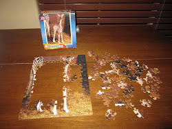Karleigh's Puzzle