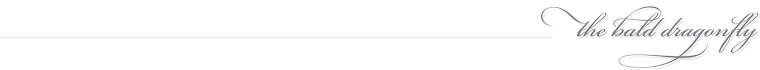 The Bald Dragonfly