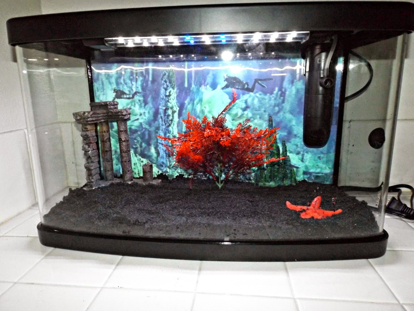 One bored mommy blogspot a national geographic petsmart for National geographic fish tank filter