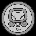 B'atz' - Portafolio
