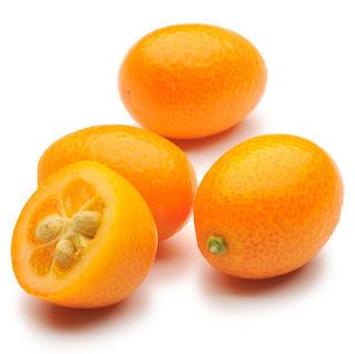Kumquat ovale Nagami Kumquat2