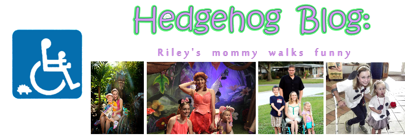Hedgehog Blog: Disabled Mom Parenting with Cerebral Palsy after Pregnancy
