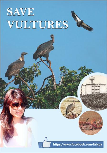 Kricpy - Vulture
